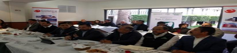 Digitalizará IMSS trámites de pensiones: Beltrones Burgos