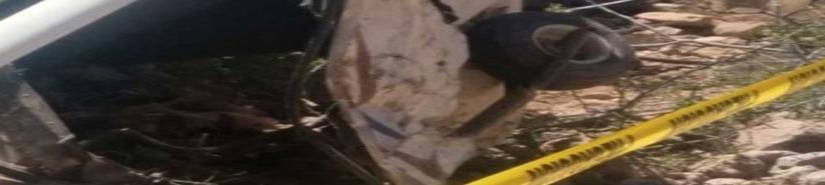 Se desploma avión ultraligero en Sonora; mueren dos estadounidenses