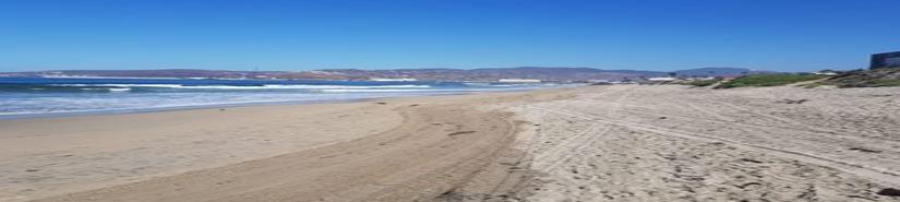 Están aptas para su disfrute las playas de Ensenada