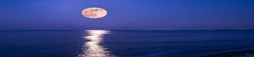 Luna Rosa cautiva alrededor del mundo