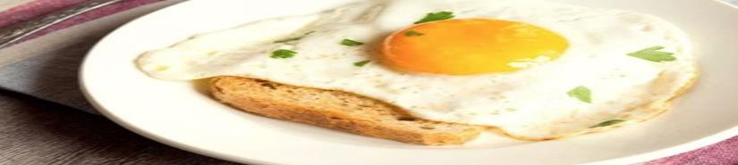 Investigadores del IPN mejoran propiedades nutricionales del huevo