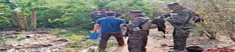 América Central, ¿laboratorio del narco?