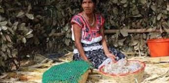 Ley de Consulta de las Comunidades Indígenas en Baja California