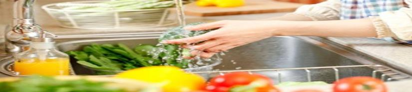 Alimentos insalubres provocan salmonelosis, lo señalan especialistas del IMSS