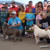 Rosarito bully show 2013