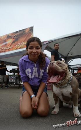 Rosarito Pitbull & BUlly Show 2014