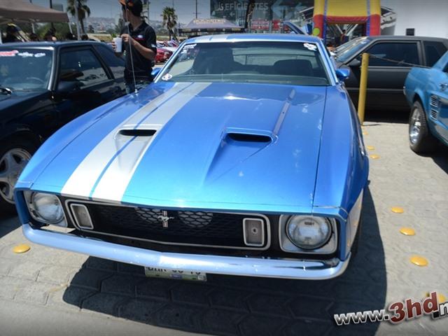 1er Aniversario de club de Mustangs