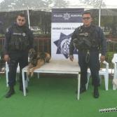 Tijuana Bully Festival