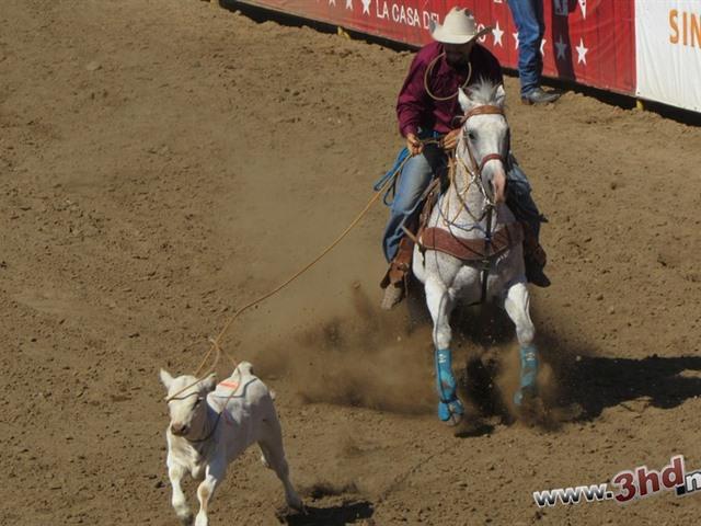 Rodeo en Casian
