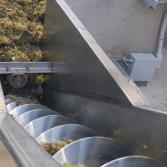 Vendimia 2017 de la vinícola L.A. Cetto
