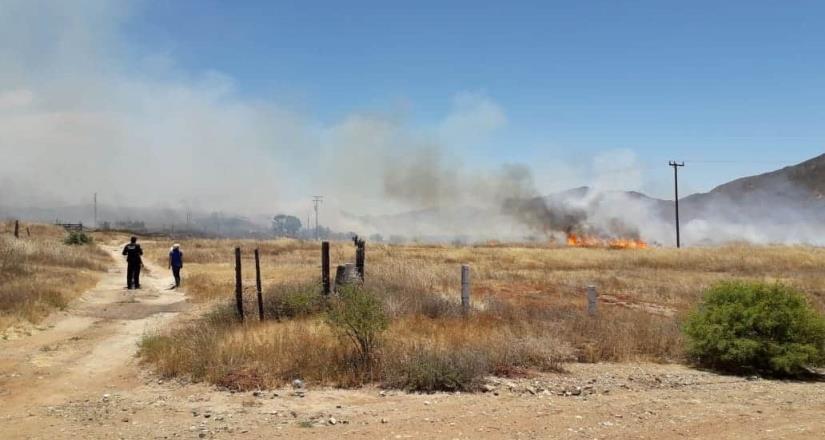 Reportan incendio de pastizal en San Vicente