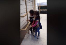 Tras volverse viral por no llevar lunch, niño recibe ayuda del DIF