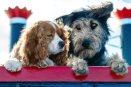 Live action de La Dama y el vagabundo será con perritos reales que fueron rescatados