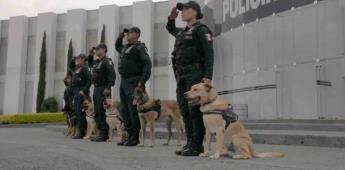 Inician campaña de adiestramiento canino en alcaldía de CDMX