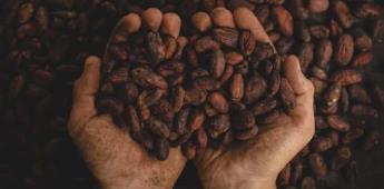Para invertir no importa saber dónde se produce el mejor cacao del mundo