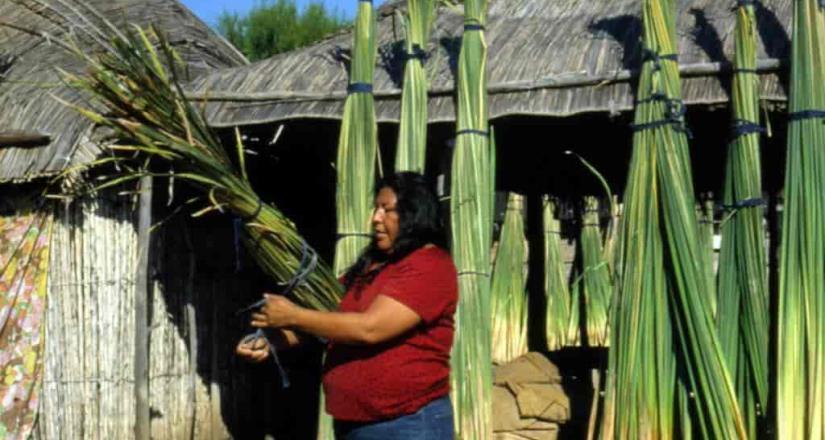 Pide a pueblos originarios explotar recursos de forma responsable