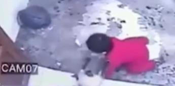 Héroe gatuno salva a niño de caer por las escaleras