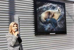 Proyectarán en Baja California Memorias de un mexicano