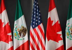 Hallan 11 migrantes escondidos en camión en la puerta fronteriza de San Diego - Tijuana