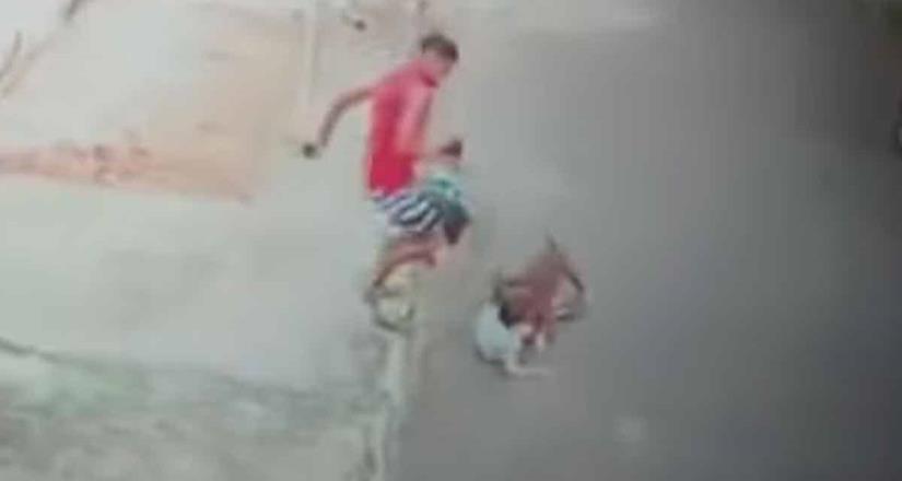 Joven rescata a niño de 5 años del ataque de un perro