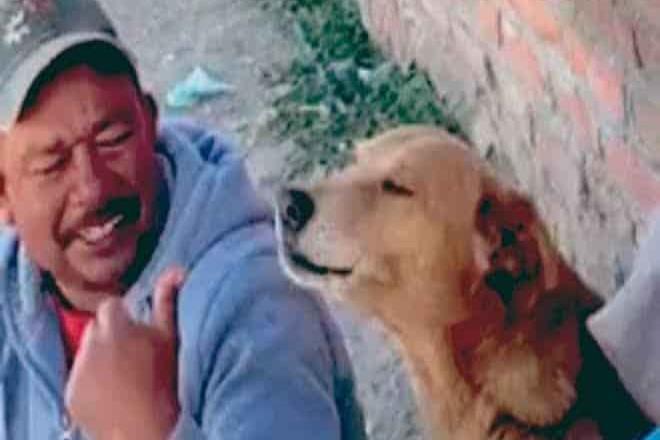 Perrito canta canción de Los Temerarios e impresiona a internautas