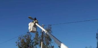Reparan el alumbrado público de San Vicente