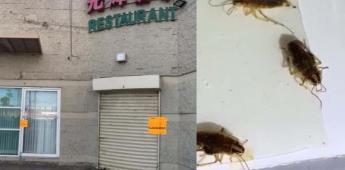 Clausuran restaurante de comida china; Había cucarachas y excremento de rata