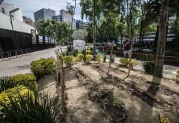 Asesinan en Puebla al Doctor Cosquillas