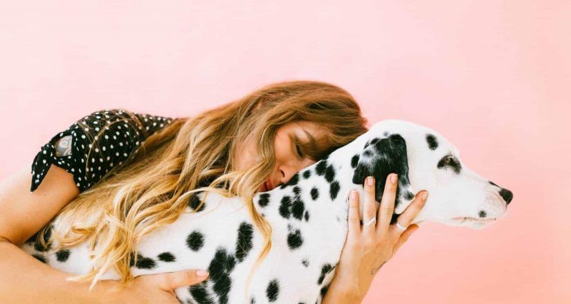 ¿Sin dinero para cumplir tus propósitos del 2020? Hospeda perritos