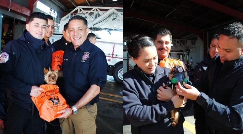 Gestiones de presidente municipal brinda 23 equipos de emergencia para atención de mascotas