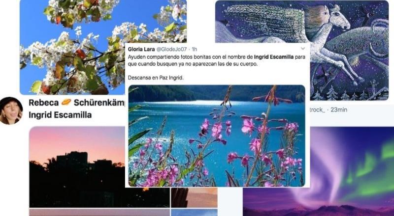 Usuarios se unen para publicar imágenes lindas  en nombre de Ingrid y evitar las que se filtraron