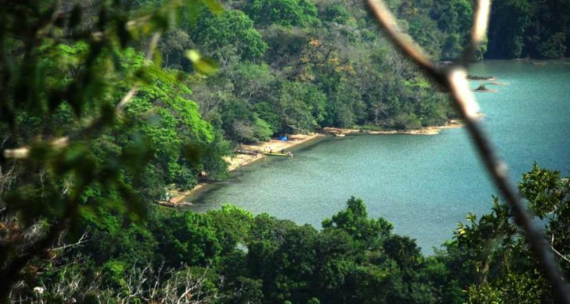 Manuel Miranda y familia Miranda apoyan a Grupo Salinas para preservar la Selva Lacandona