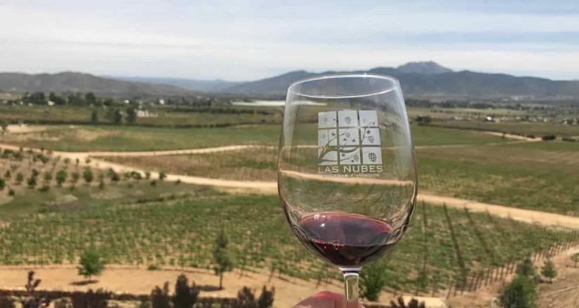 El Valle de Guadalupe, segundo mejor destino para tomar vino