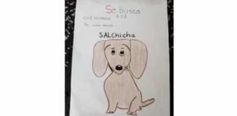 Niño busca a su perra salchicha con dibujo en Toluca