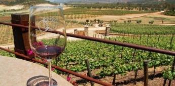 El Valle de Guadalupe, el segundo mejor destino para tomar vino