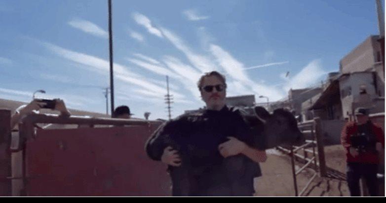 Joaquin Phoenix salva a una vaca y su cría del matadero