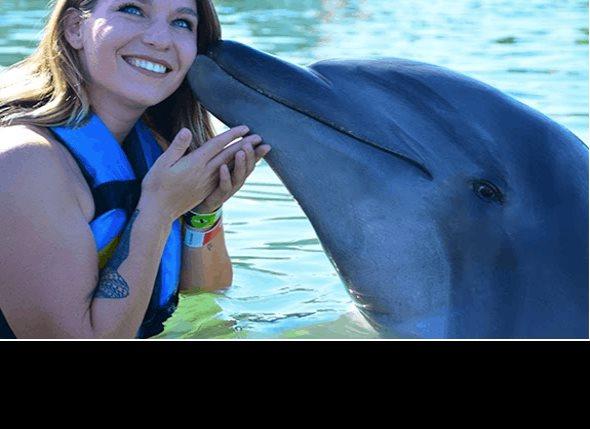 Dolphin Discovery: disfruta del medio ambiente marino de la costa mexicana