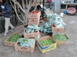 Dona el CABC toneladas de hortalizas de exportación