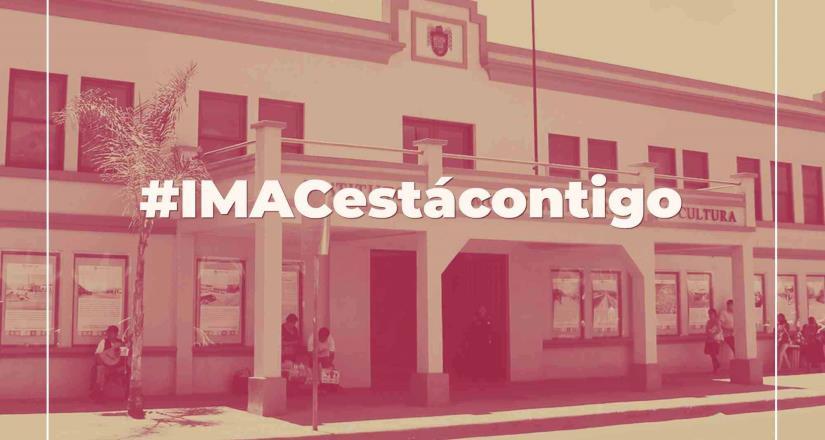 """""""Campaña #IMACestácontigo busca crear comunidad a través del arte en internet"""": Minerva Tapia"""