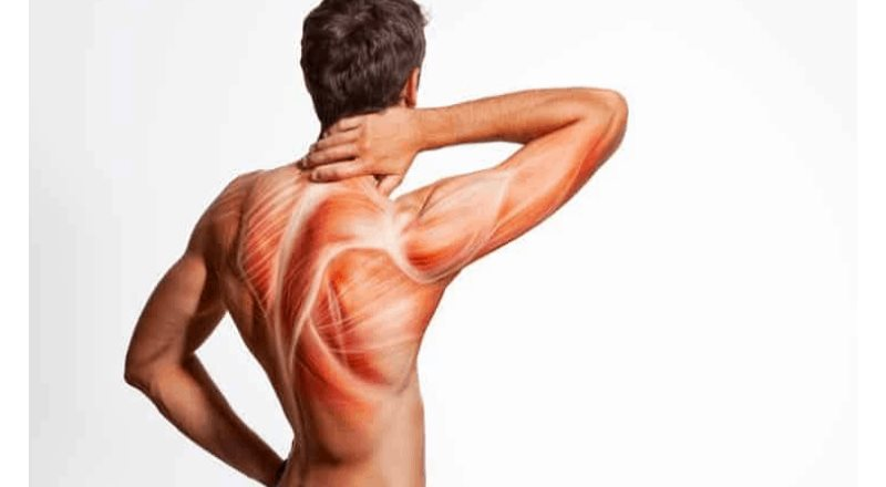 ¿Ejercicio en cuarentena? Cuida tu sistema muscular en casa