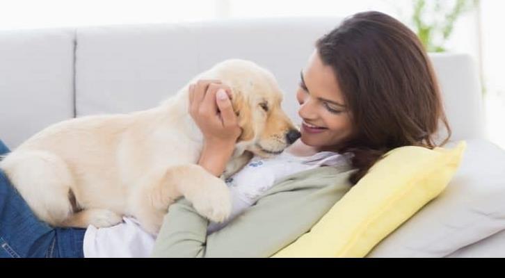 Ejercitate con tu mascota en casa reduce estrés y ansiedad por confinamiento ante la contingencia