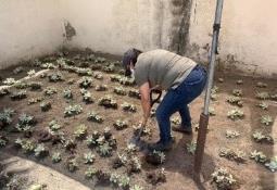 Actualización de medidas preventivas por Ayuntamiento de Tijuana