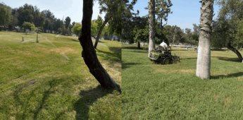 Realiza el SIMPATT labores de mantenimiento de áreas verdes de los parques Morelos y de la Amistad
