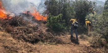 Sofocan incendio forestal ubicado en la zona llamada Rancho Sandoval en Tecate