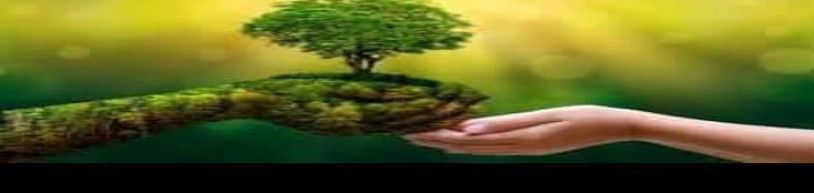 Día Mundial del Medio Ambiente. Tips para conservar el ambiente
