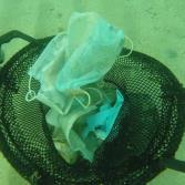 Grupo ambientalista encuentran repleto de guantes y cubre bocas el mar Mediterráneo