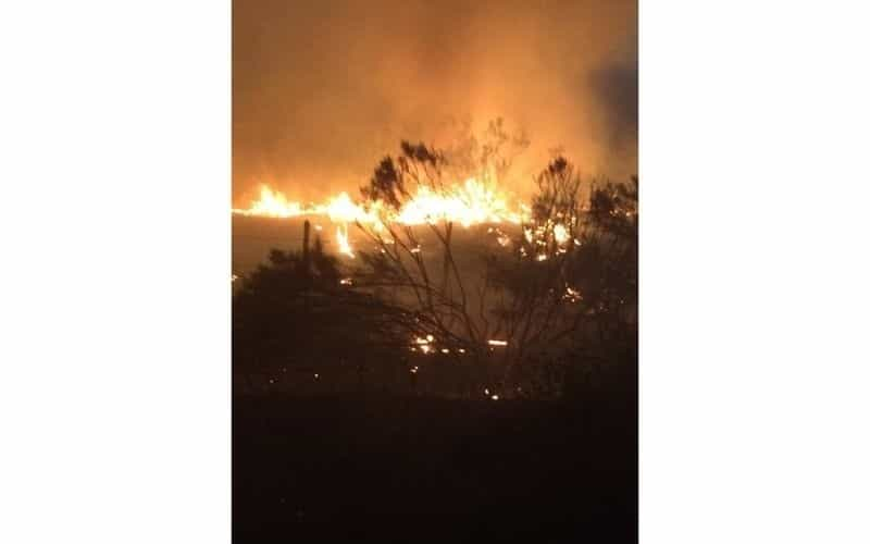 Siguen Incendios en Valle de las Palmas