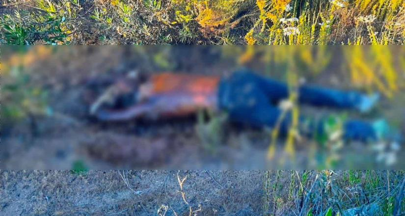 Dos cuerpos localizados en camino vecinal en Tecate