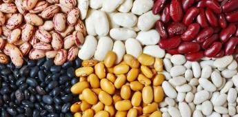 México si desarrolla variedades de frijol y arroz