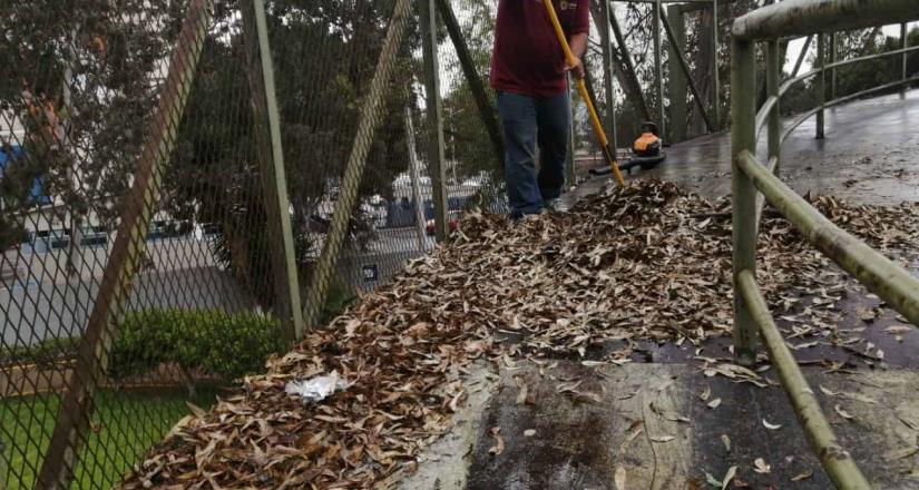 Realiza Ayuntamiento jornada de rehabilitación de ciclopista en la canalización del río